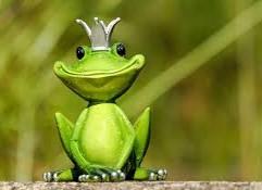 המתרגמת כצפרדע